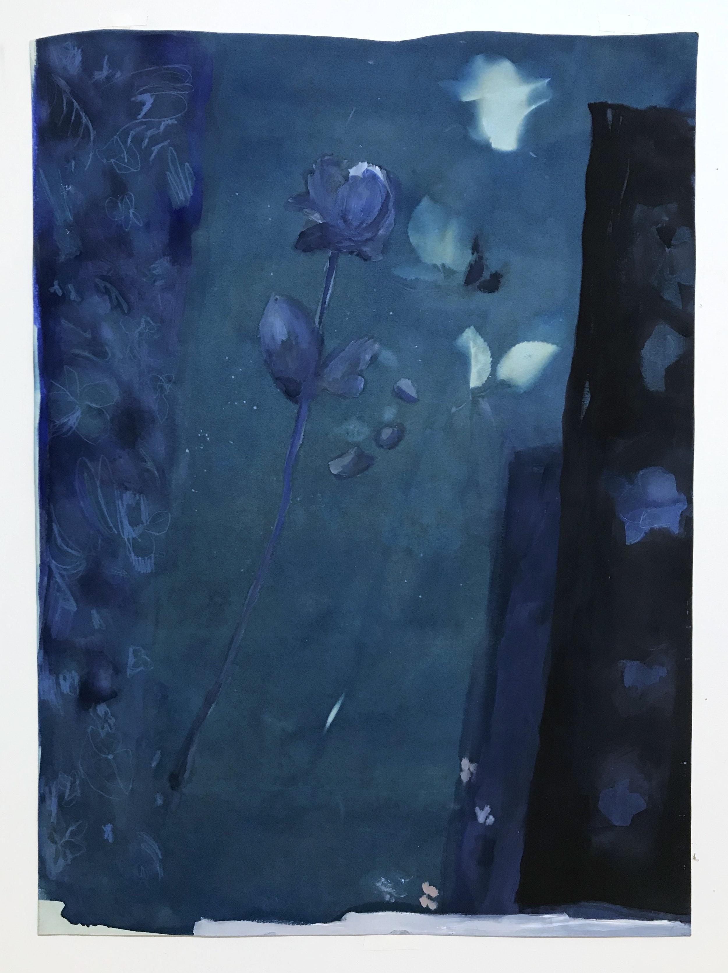 """Blue rose, 2019  Oil on cyanotype. 22x30"""""""