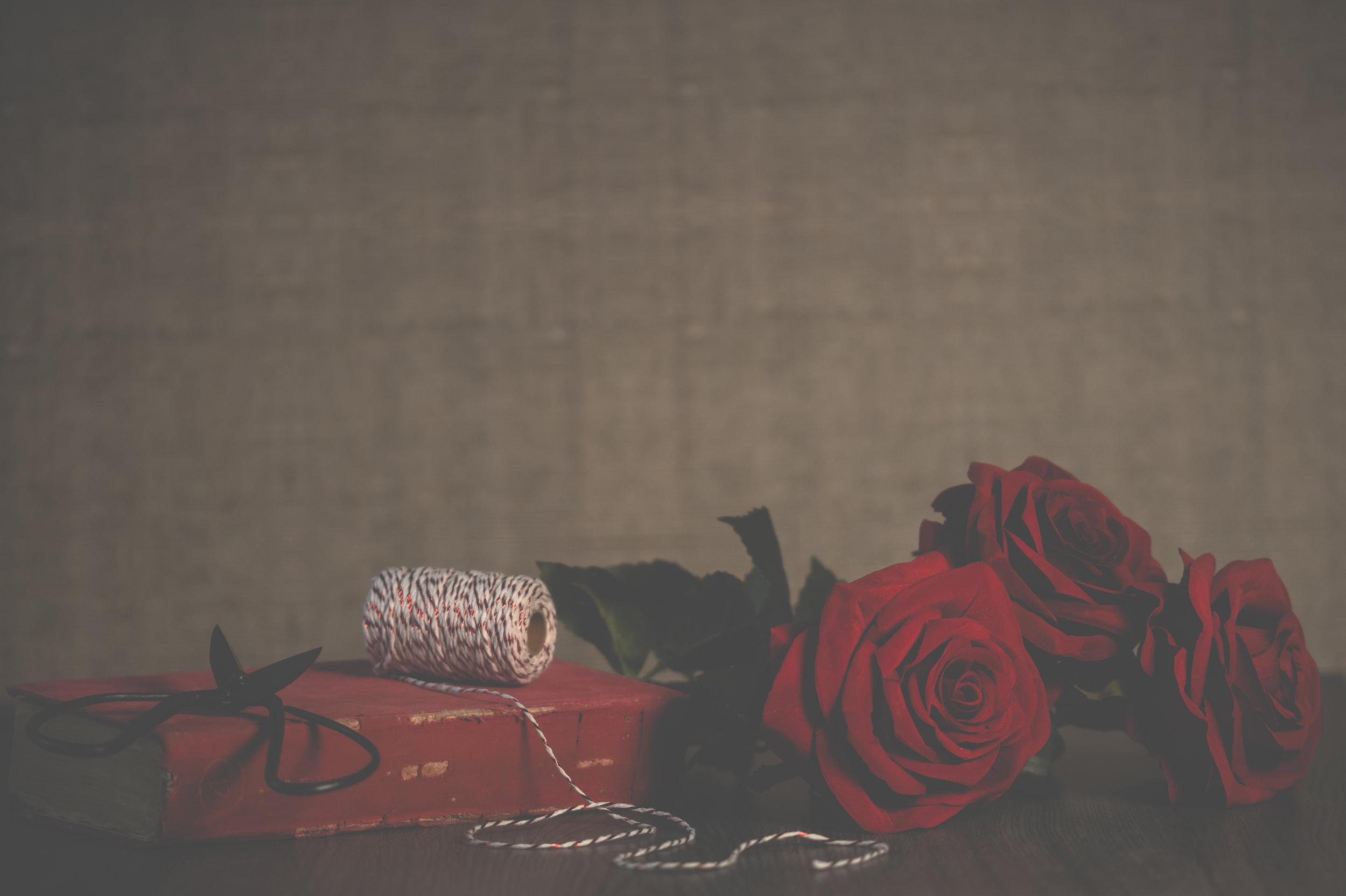 roses-rose-scissors-book-love-red-1418880-pxhere.com.jpg