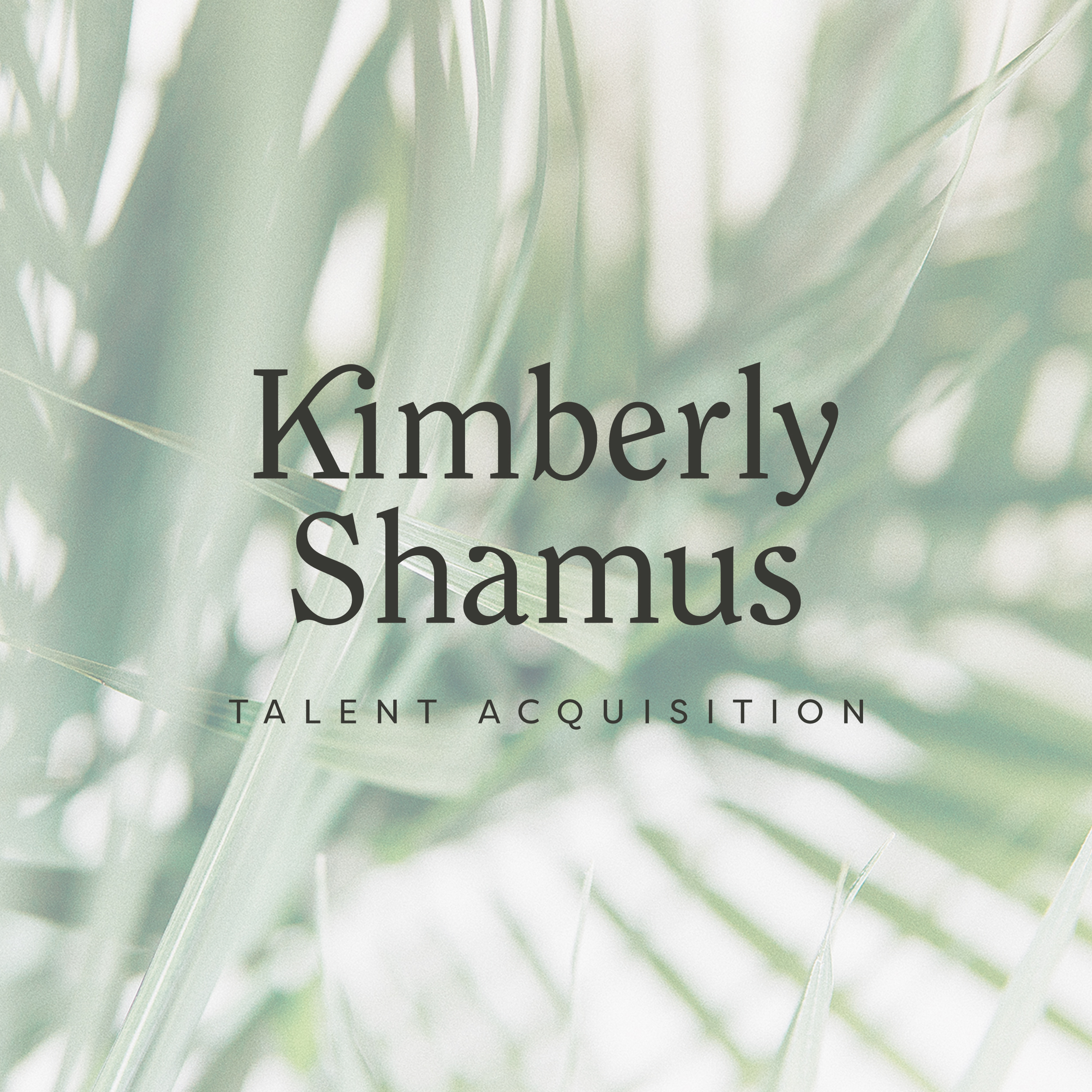 Kimberly Shamus - Brand & Website Design