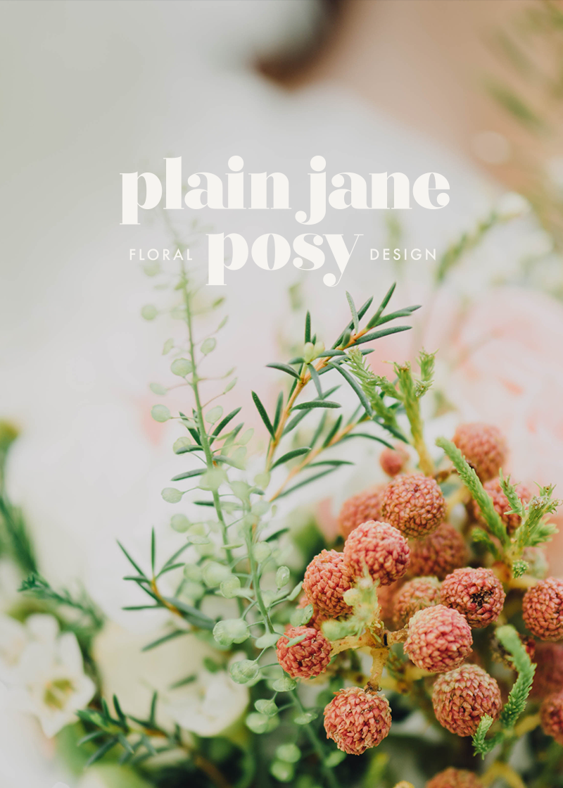 Plain Jane Posy - Brand Design
