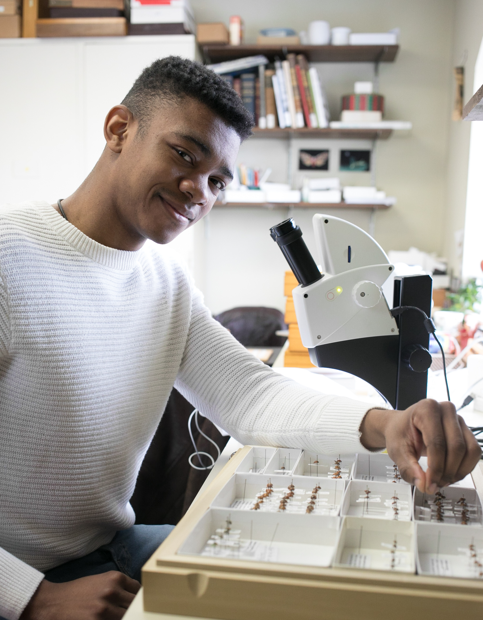 Volunteer, Anwar Abdul-Qawi, uses the collection as a reference to help identify a ladybug.