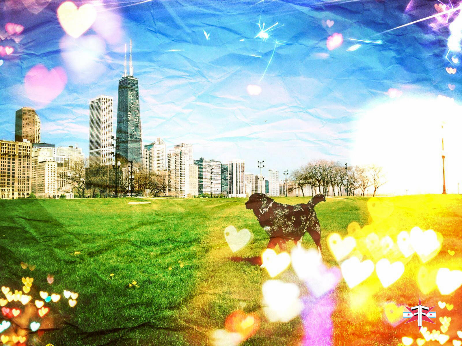 chicago downtown loop sears tower hancock buildings towers trippy vibrant colors abstract skyline cityscape eric formato formatografia fotografia arte photography color photography fine art design-5.jpg
