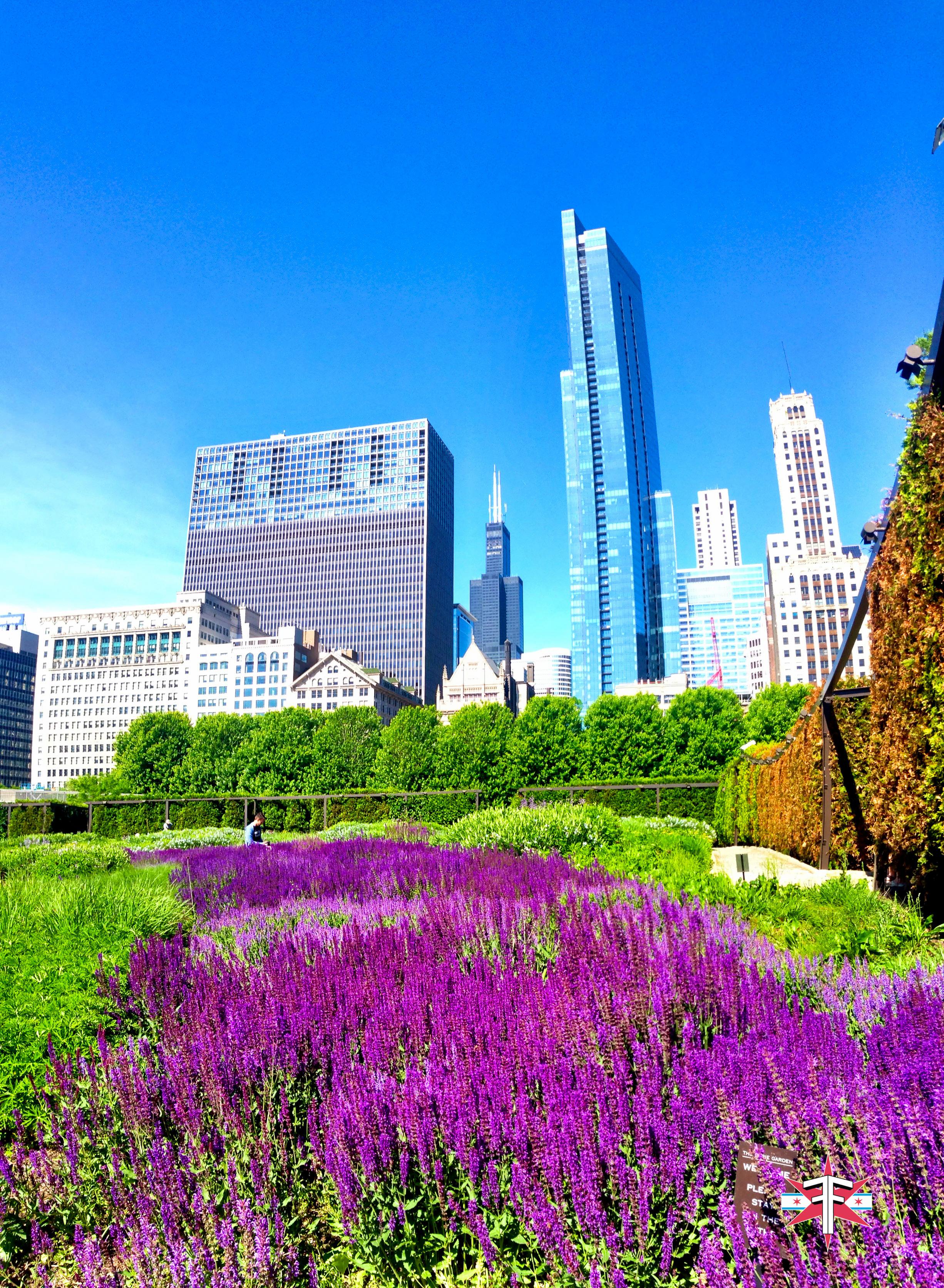 chicago art architecture eric formato photography design arquitectura architettura buildings skyscraper skyscrapers-301.jpg