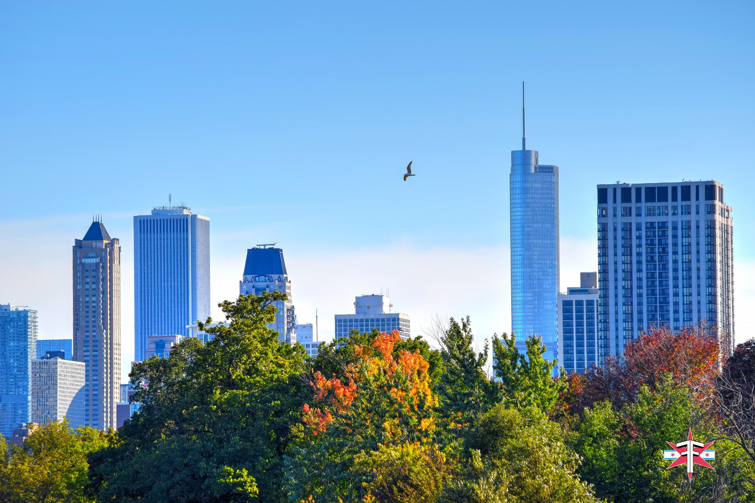 chicago art architecture eric formato photography design arquitectura architettura buildings skyscraper skyscrapers-31.jpg