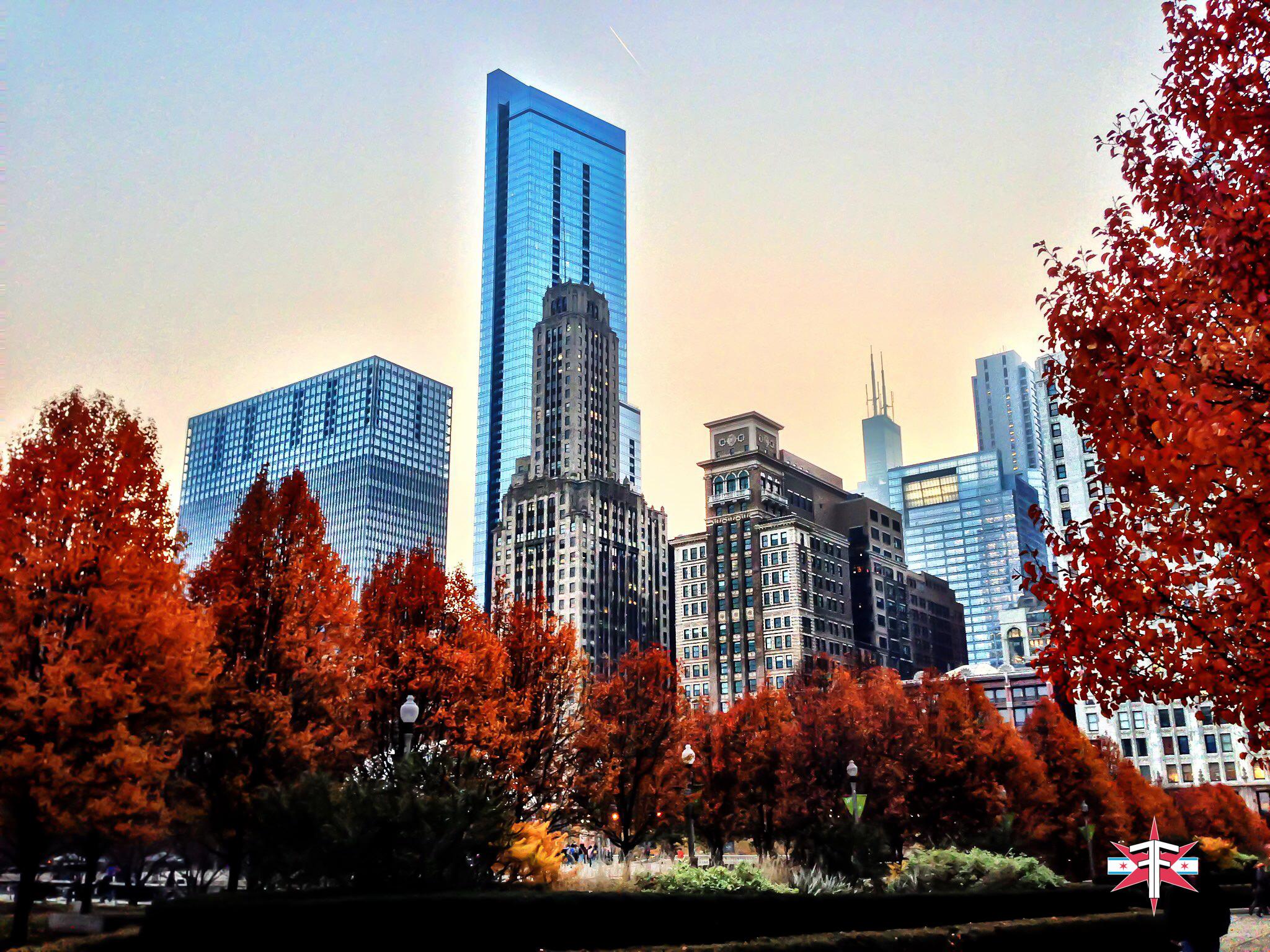 chicago art architecture eric formato photography design arquitectura architettura buildings skyscraper skyscrapers-23.jpg