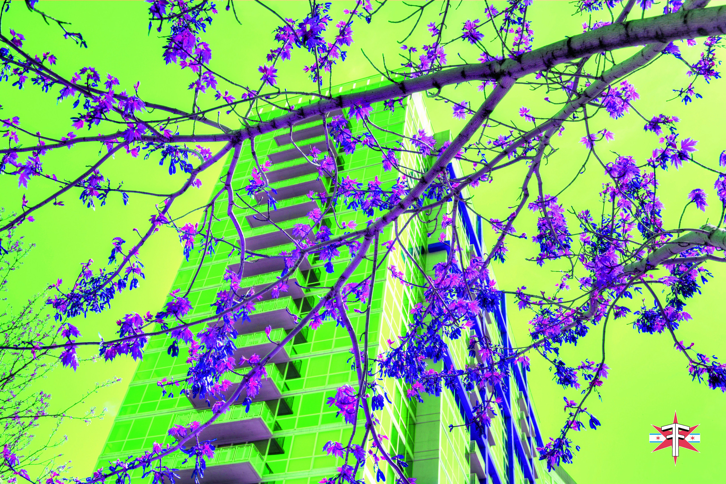 chicago art abstract eric formato photography color travel cityscape architecture saturated citycapes bright vibrant artistic-81.jpg