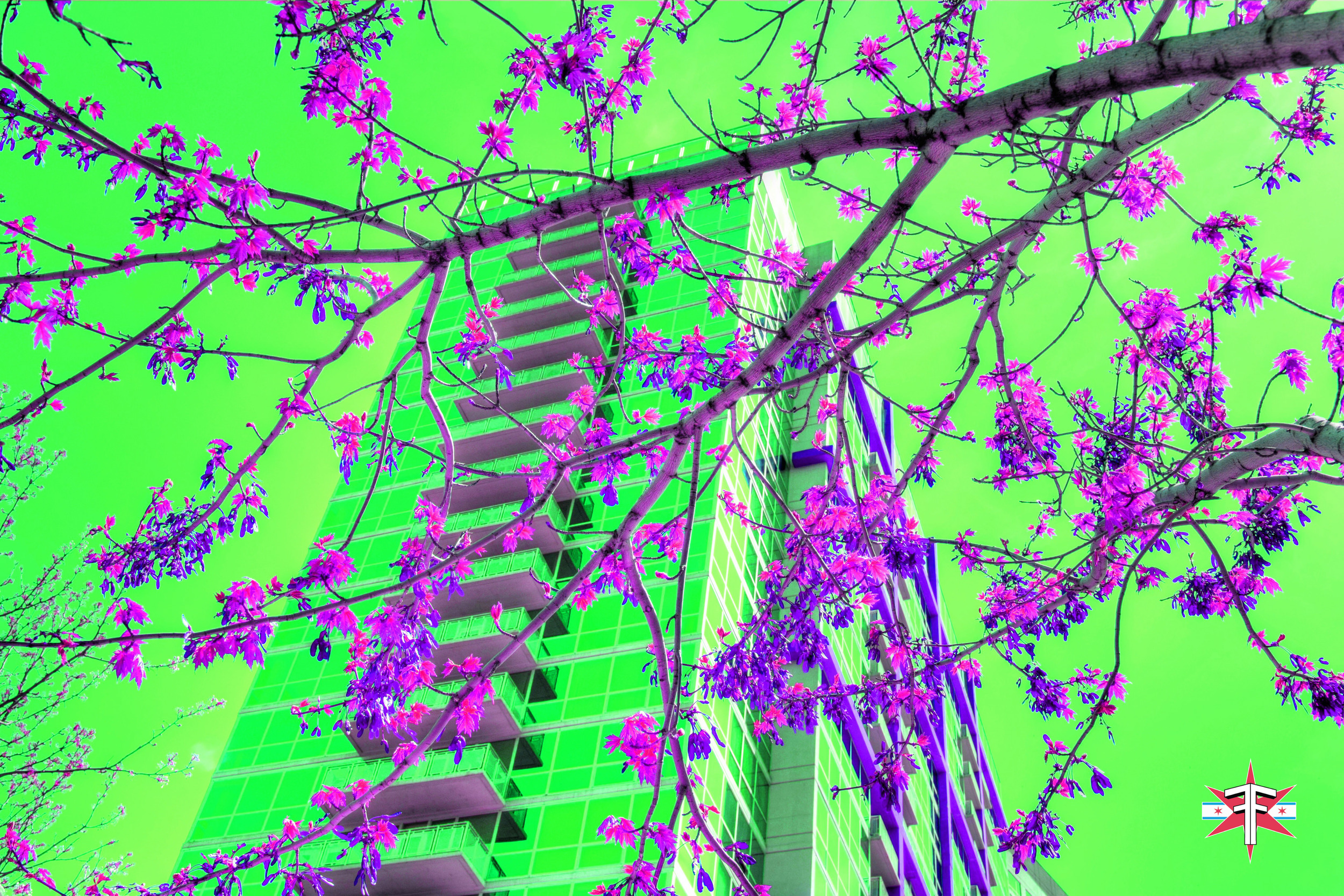 chicago art abstract eric formato photography color travel cityscape architecture saturated citycapes bright vibrant artistic-82.jpg