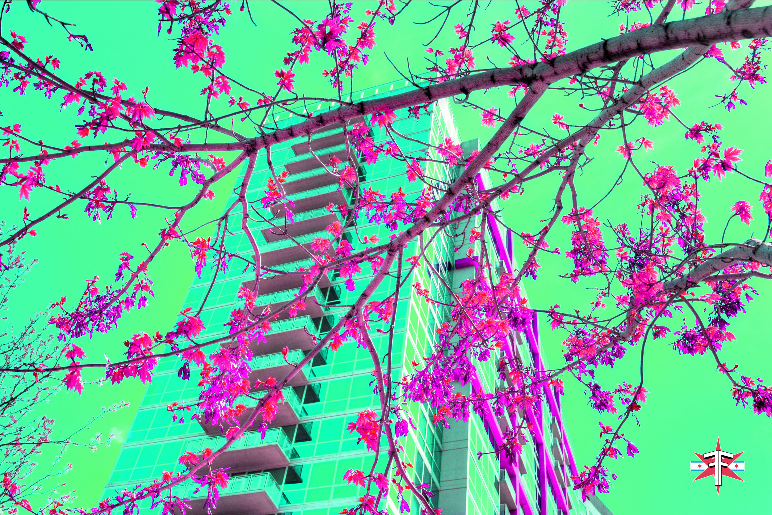 chicago art abstract eric formato photography color travel cityscape architecture saturated citycapes bright vibrant artistic-86.jpg