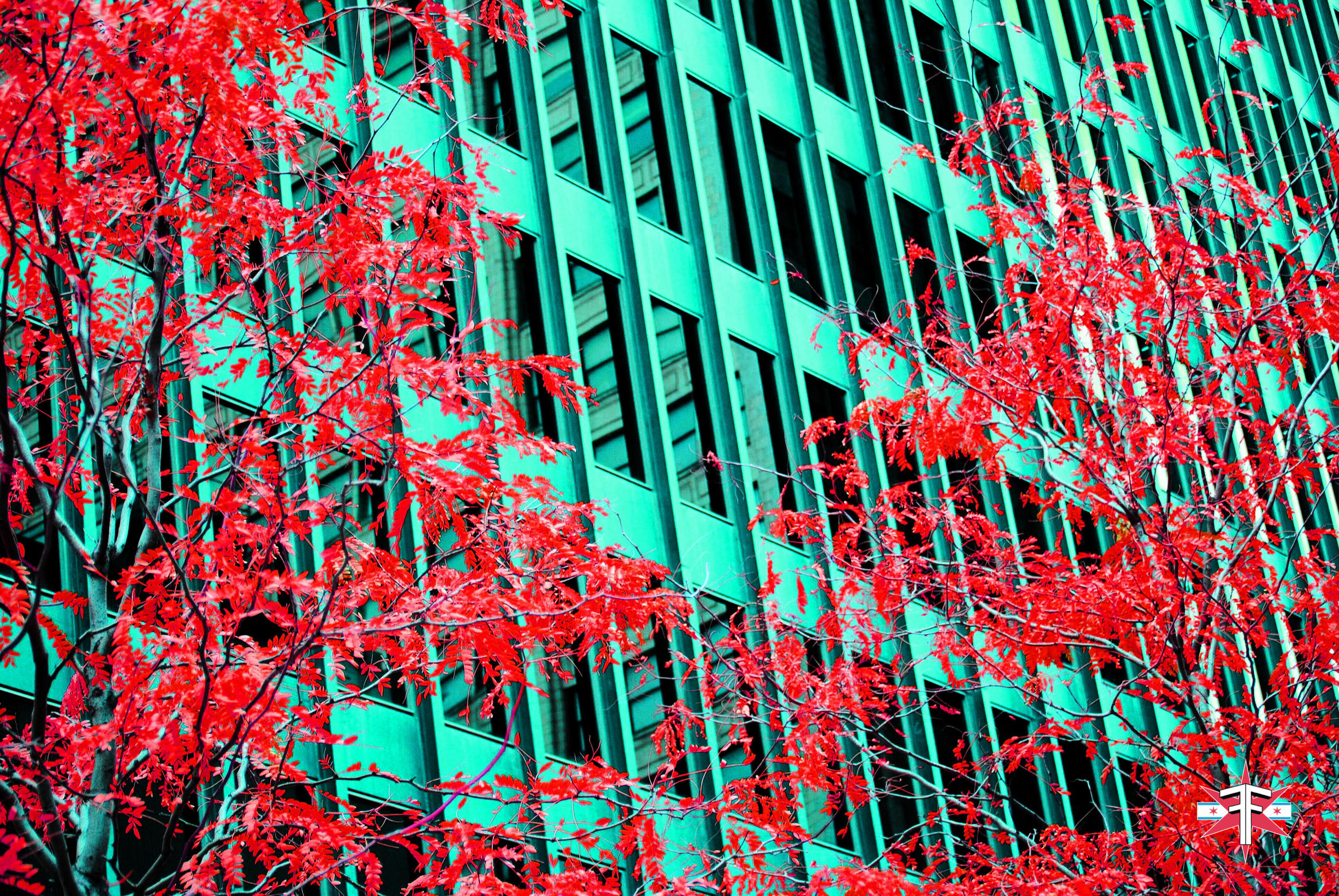 chicago art abstract eric formato photography color travel cityscape architecture saturated citycapes bright vibrant artistic-57.jpg