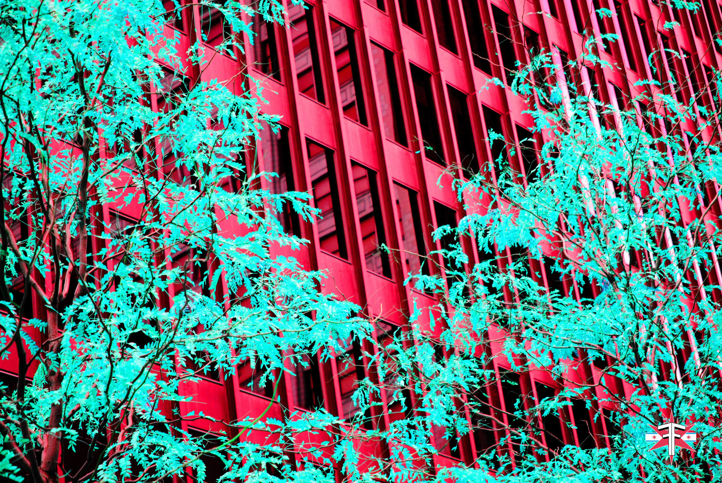 chicago art abstract eric formato photography color travel cityscape architecture saturated citycapes bright vibrant artistic-59.jpg