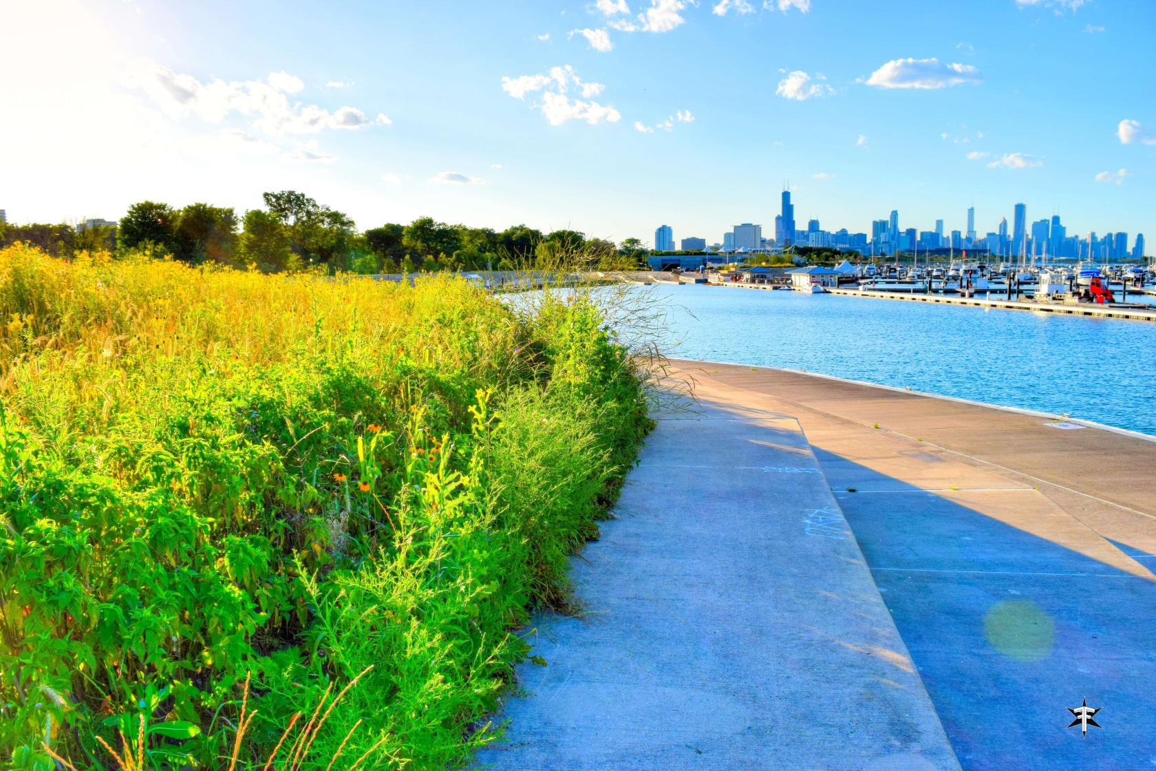 batch_Chicago burnham harbor skyline prairie buildings nature summer.jpg