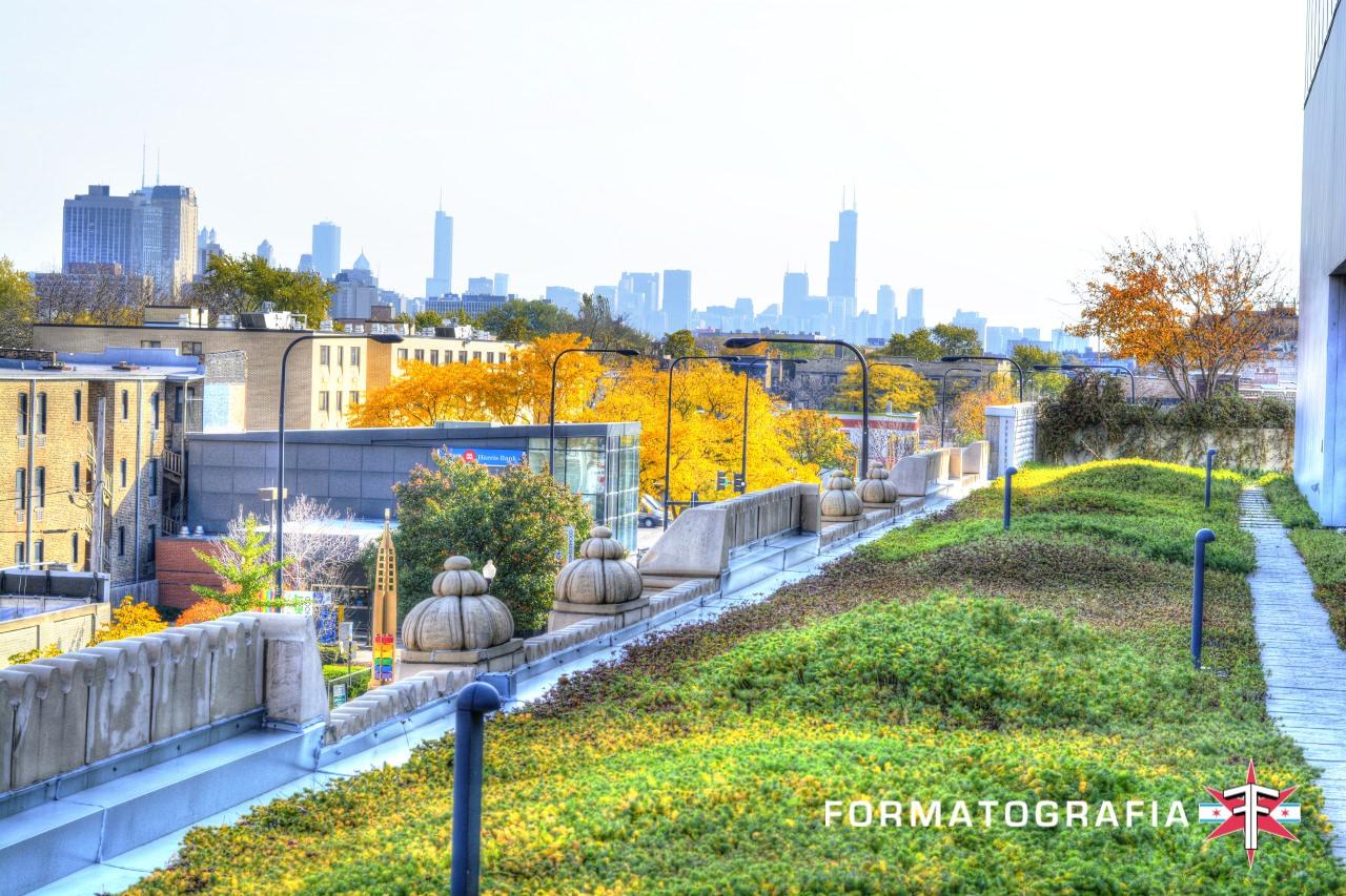 recent1COH rooftop contrast.jpg