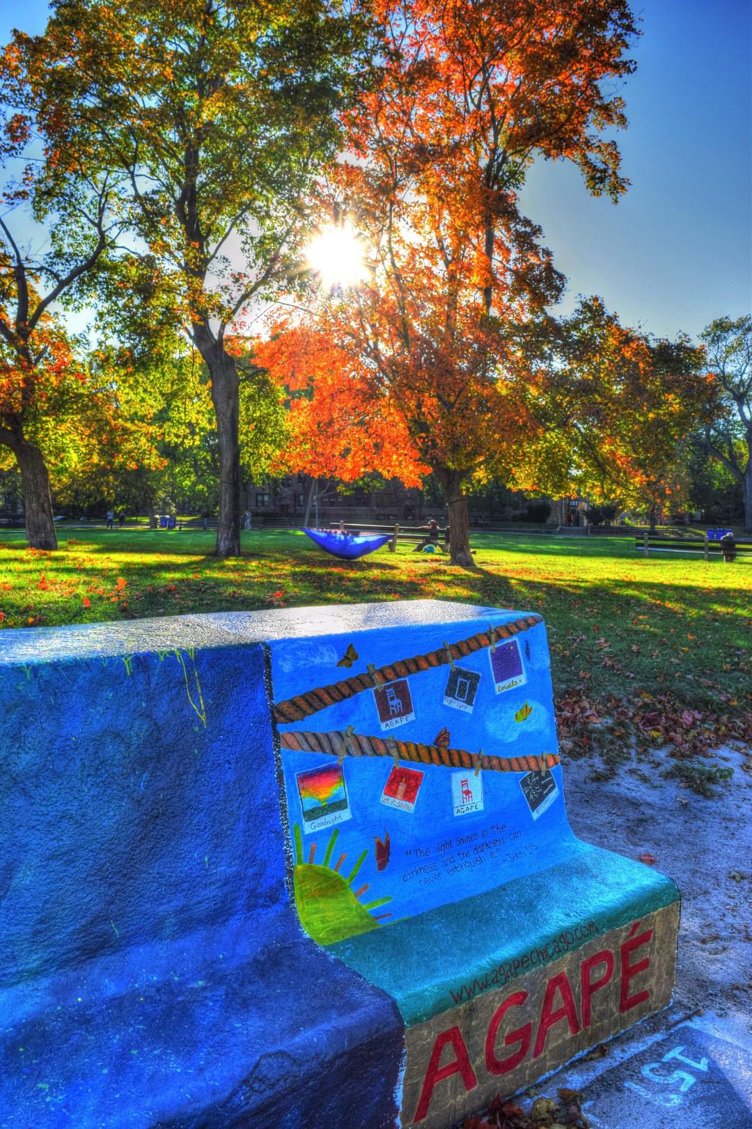 graffiti-sun-street-art-tree1.jpg