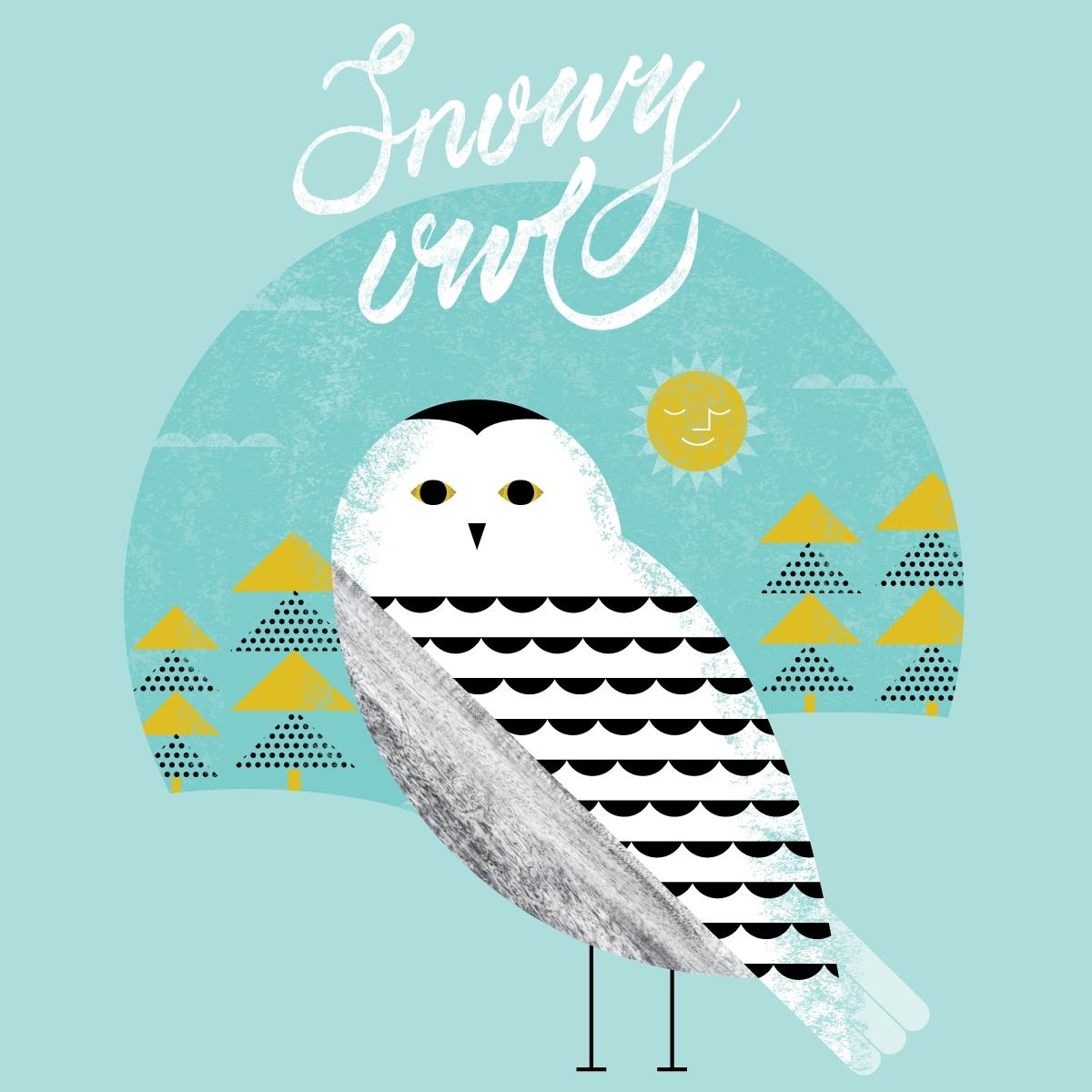 01-snowy-owl-FINAL2-02.jpg