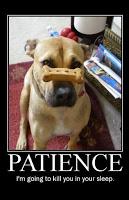 patience_small.jpg