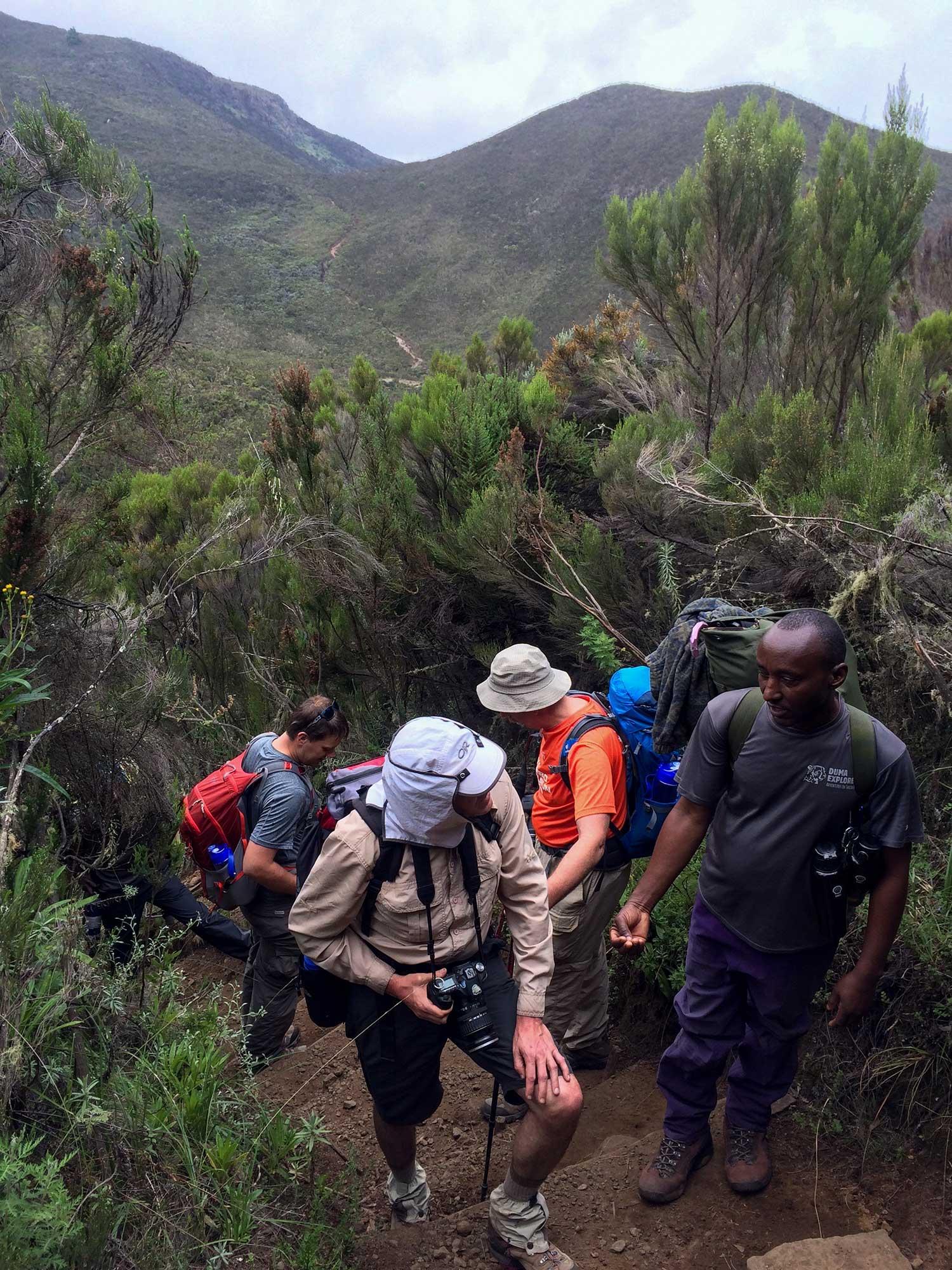 D2-16-entering-morlland-zone-kilimanjaro.jpg