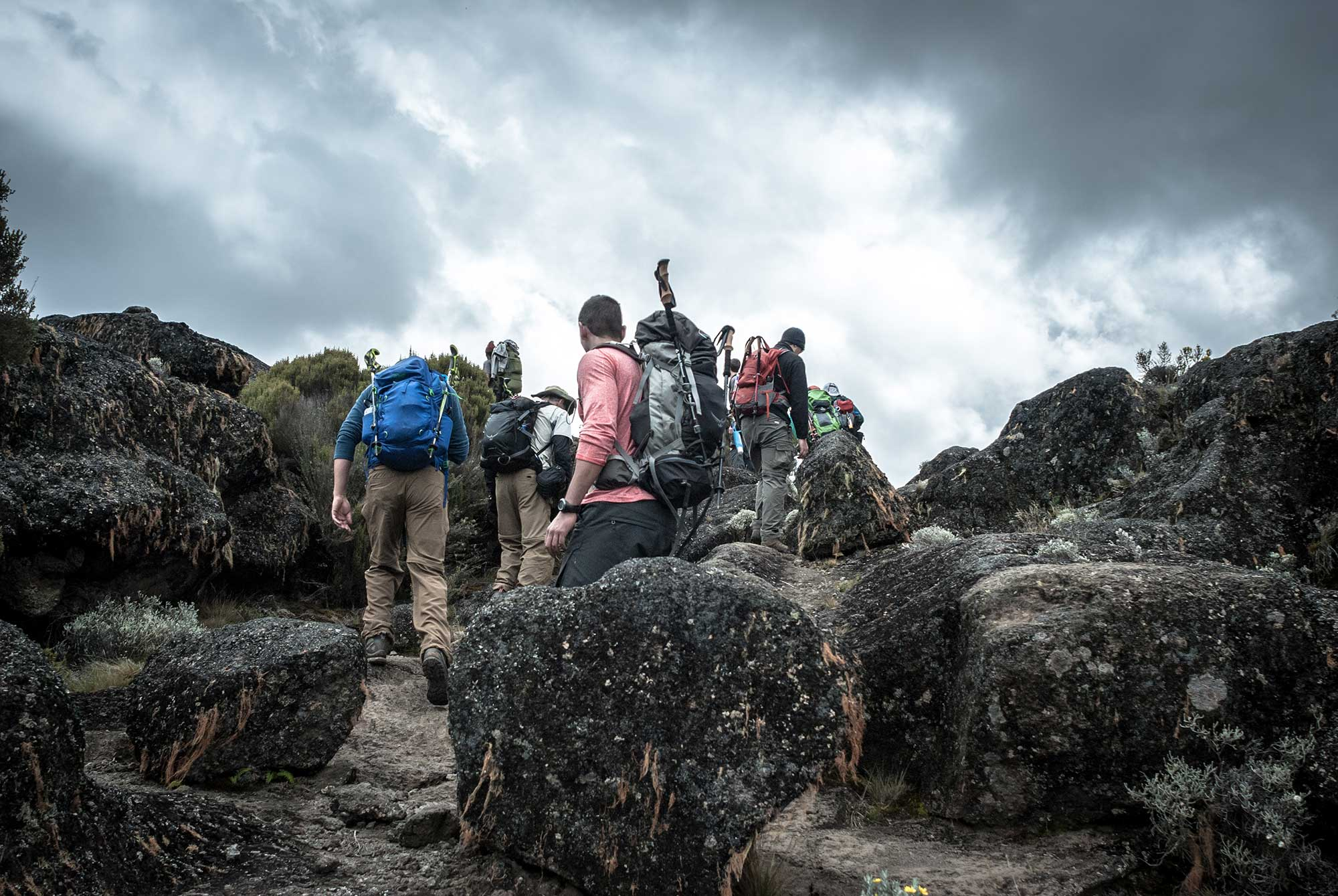 D3-24-Kilimanjaro-climbers-heading-to-Moir-Hut-Camp-02.jpg