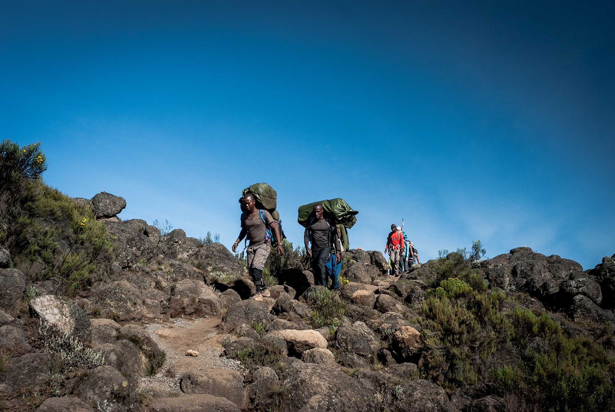 D3-18-porters-carrying-heavy-loads-shira-plateau-kilimanjaro.jpg