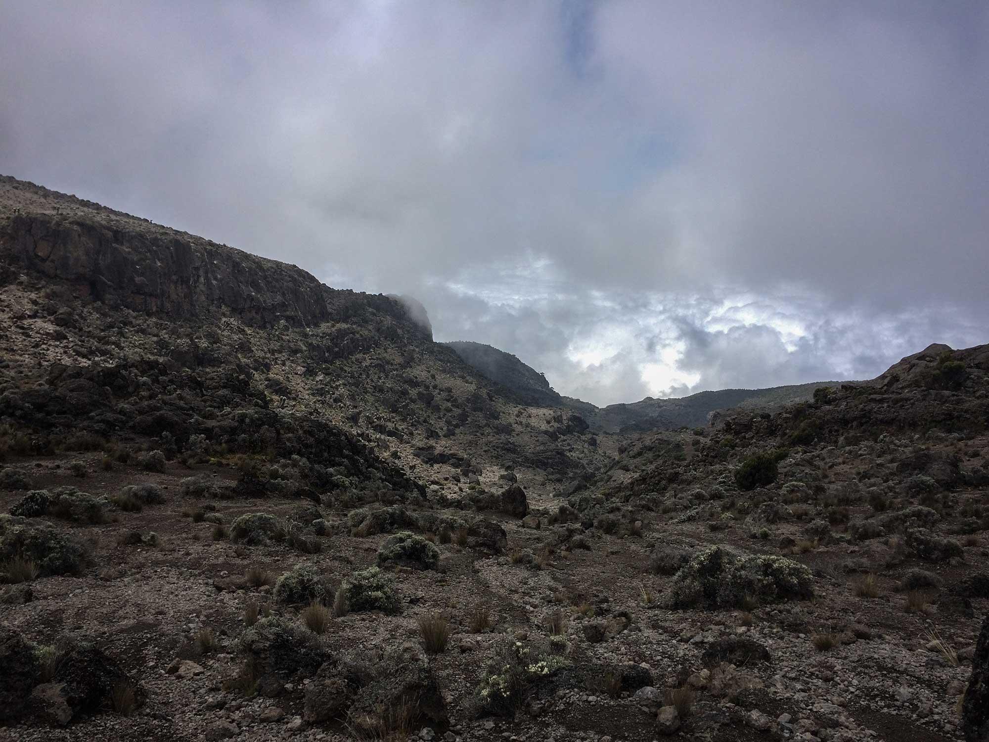 D5-15-heading-to-karanga-camp-kilimanjaro.jpg