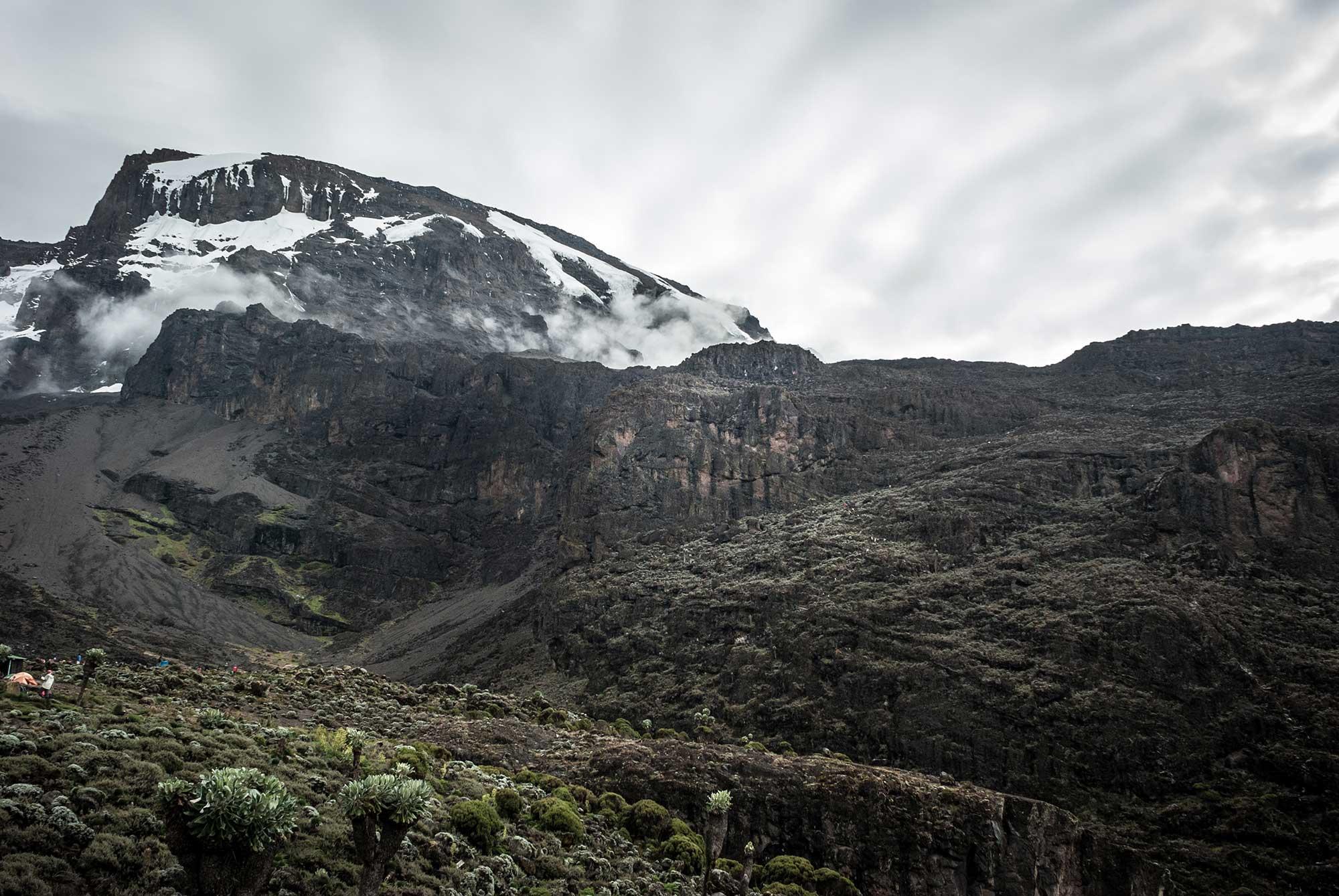 D5-06-the-barranco-wall-kilimanjaro.jpg
