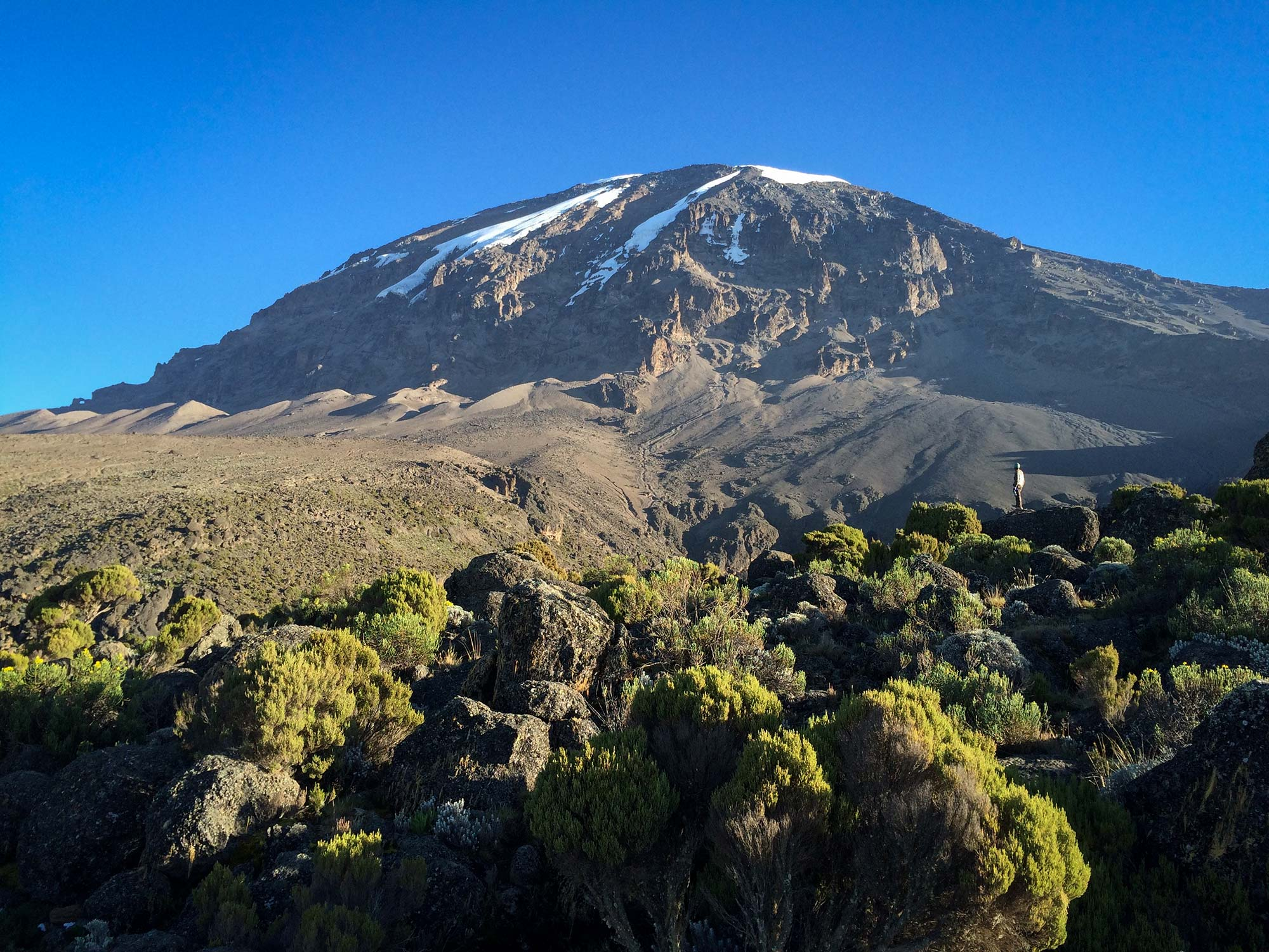 D6-20-porter-summit-gazing-karanga-camp-kilimanjaro.jpg