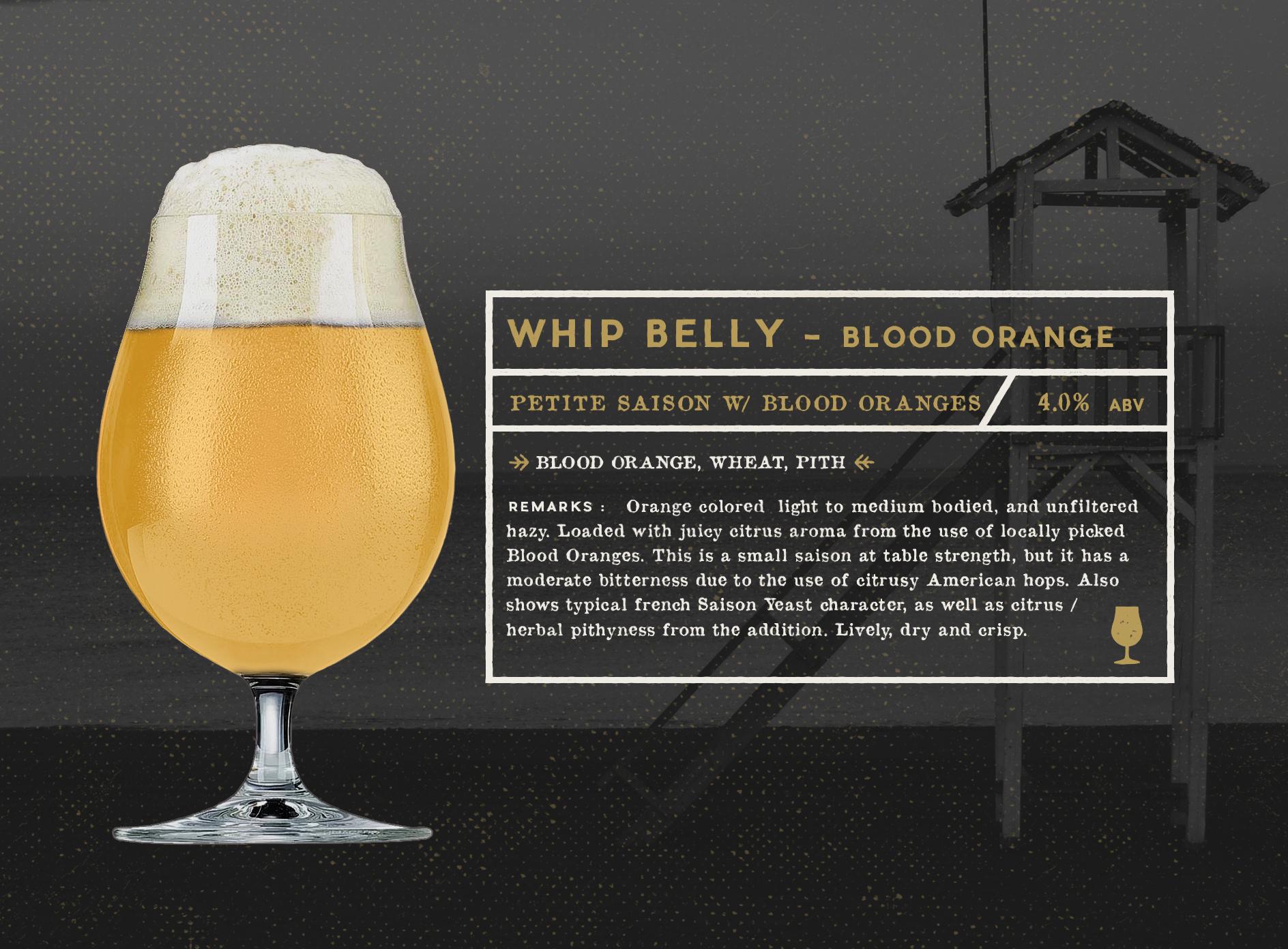 WHIP BELLY - BLOOD ORANGE