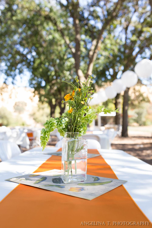 California Rustic Wedding Vacaville-10.jpg
