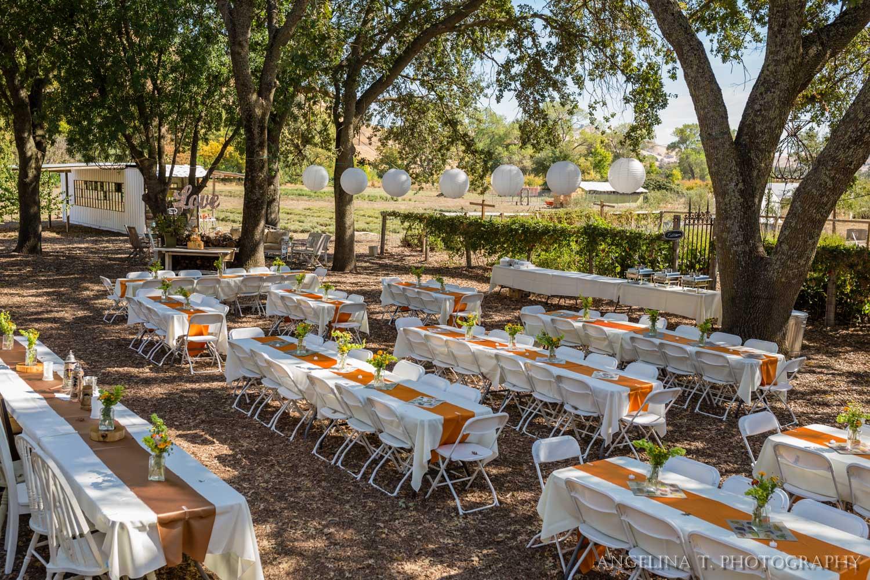 California Rustic Wedding Vacaville-19.jpg