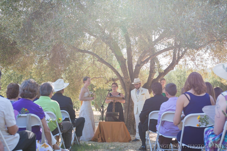 California Rustic Wedding Vacaville-38.jpg