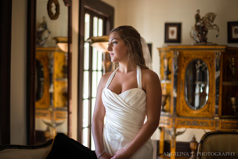 Grand Island Mansion Wedding Photographer-17.jpg