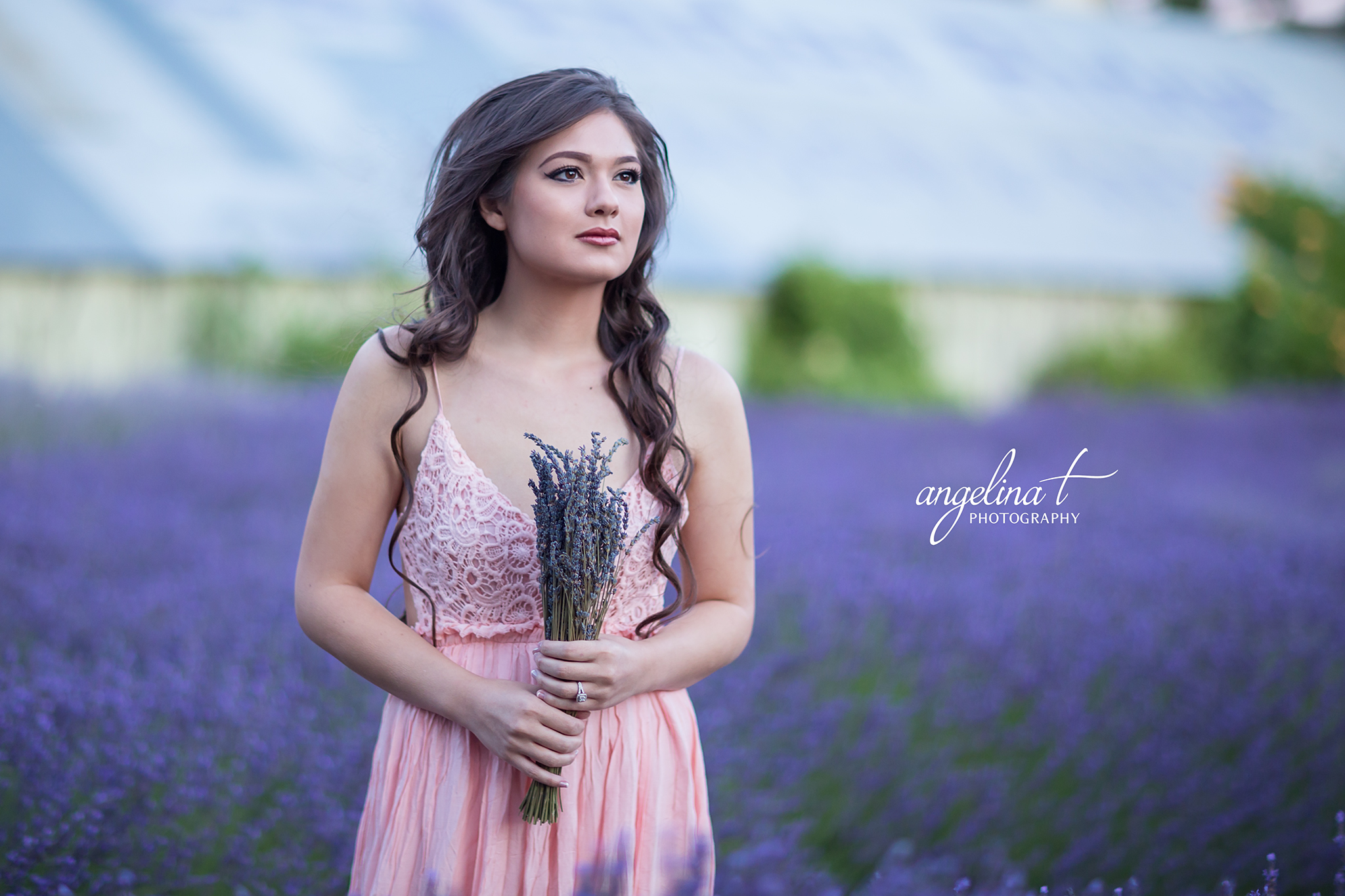 Lavender Field Engagement Photography-15.jpg