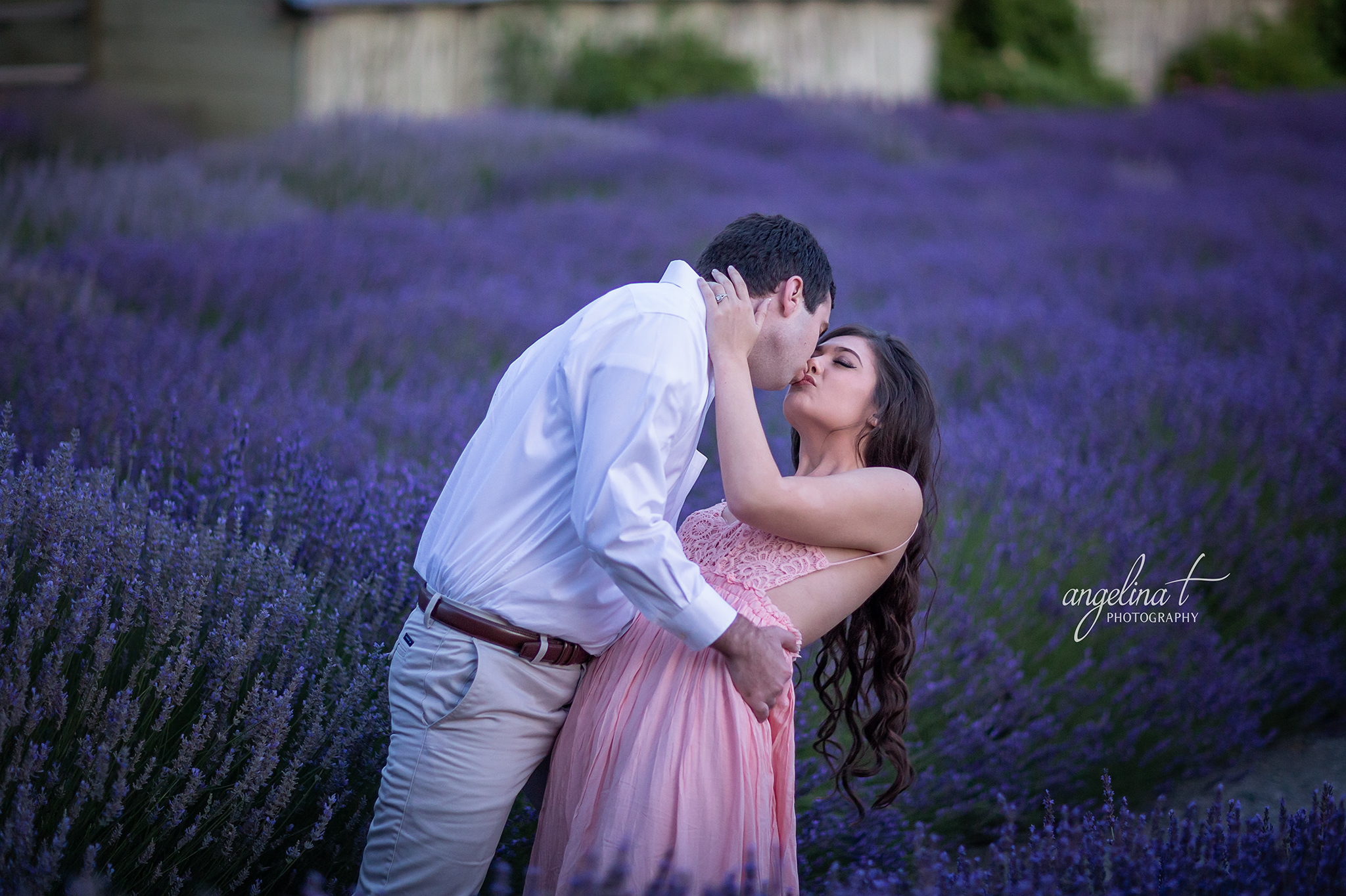 Lavender Field Engagement Photography-19.jpg