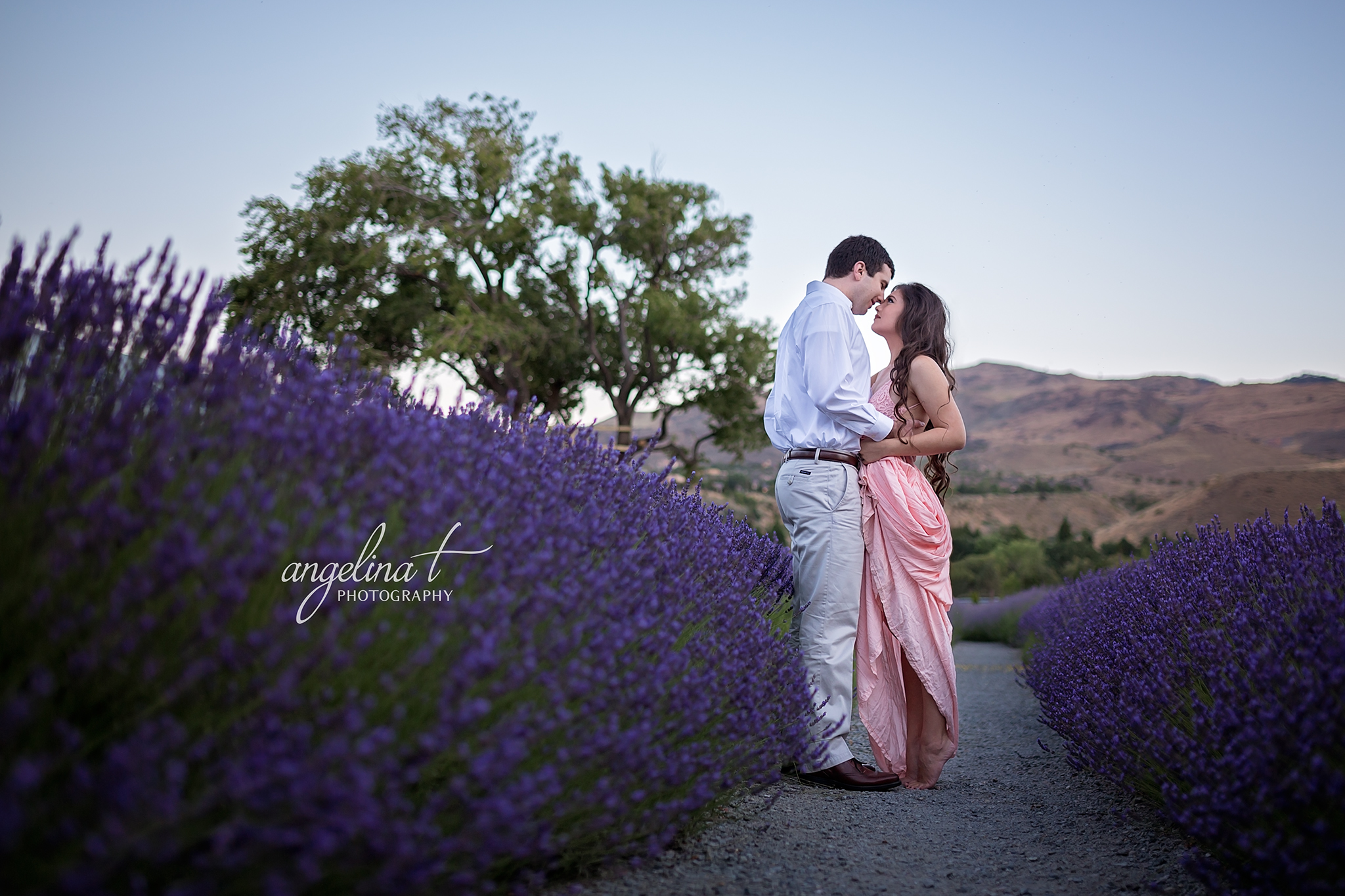 Lavender Field Engagement Photography-13.jpg