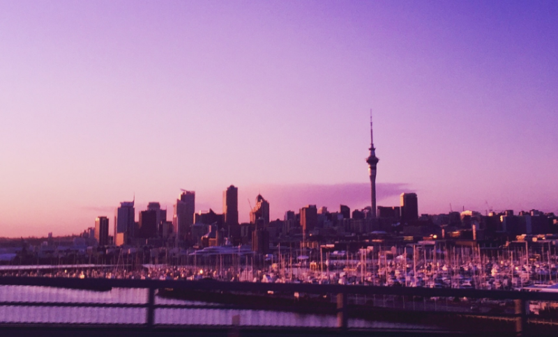 Sunrise in Auckland. This photo was snapped on the way back across the Harbour Bridge on the day we arrived.