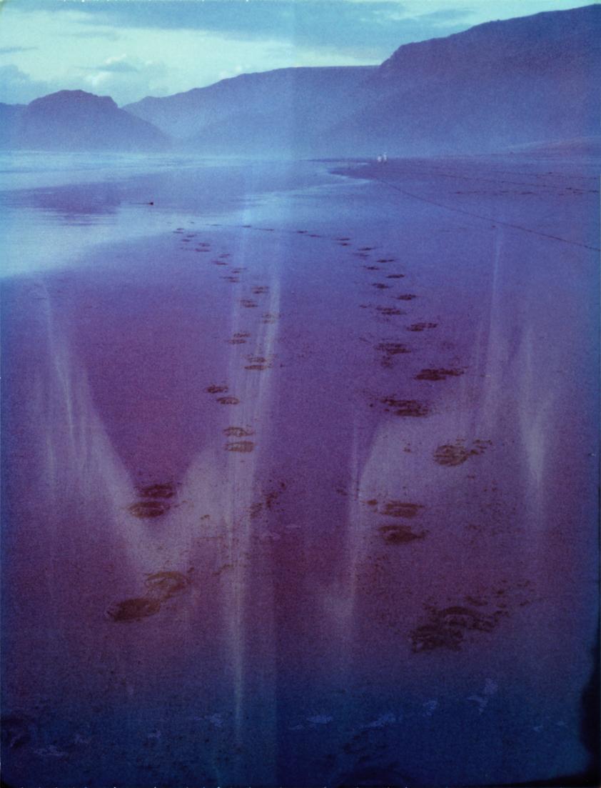 Landscape006_colbysadeghi.jpg
