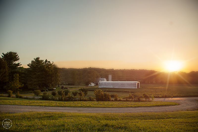The Corcoran Farm at dusk