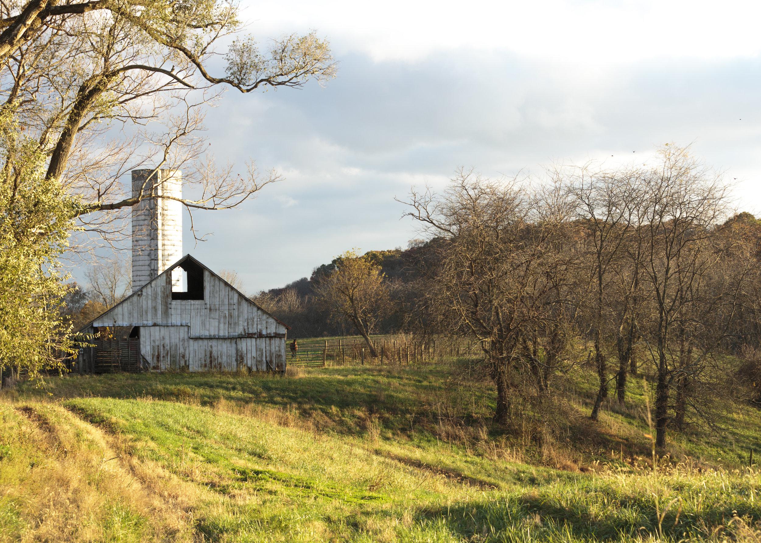Corcoran Farm2.jpg