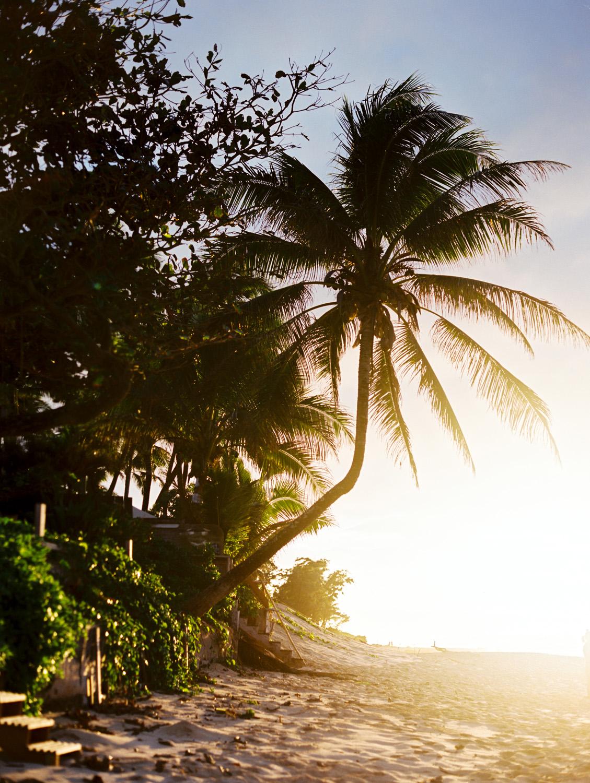 hawaiieditorial0034.jpg