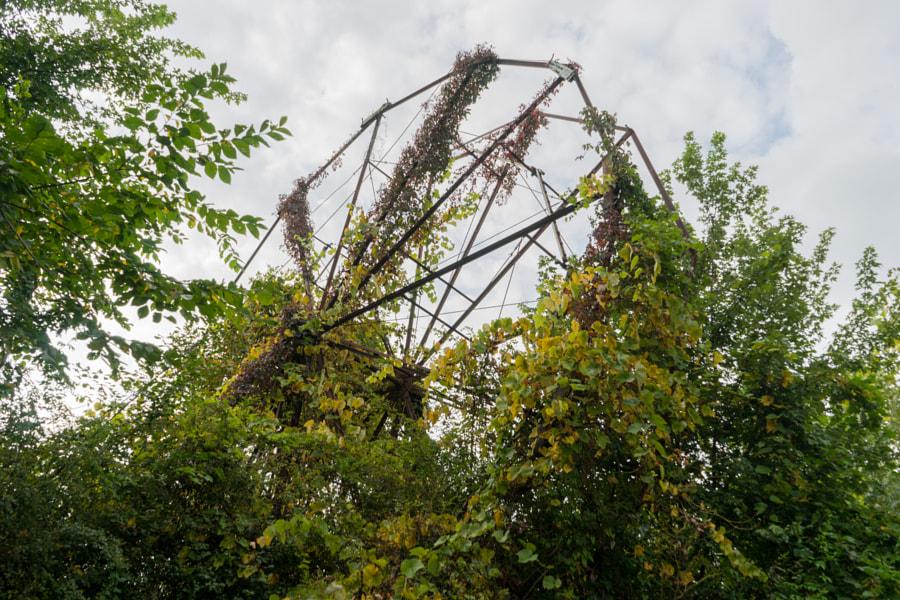 Chippewa Amusment Park Ferris Wheel