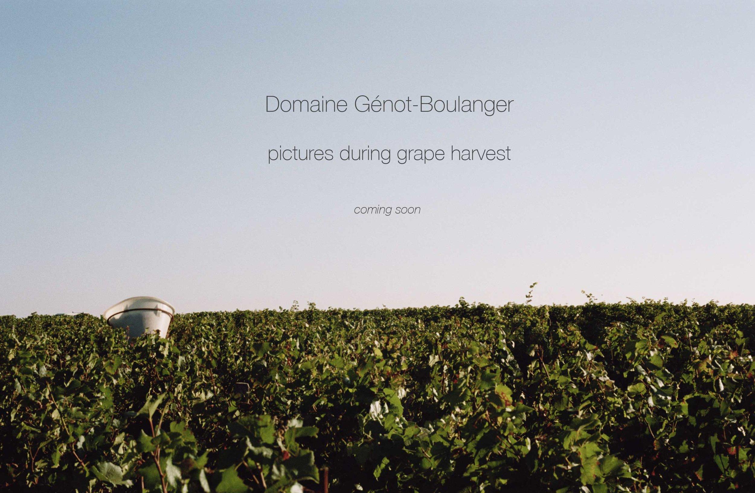 www.genot-boulanger.com