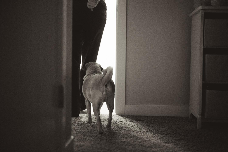 ©KateePederson Bedtime-57.jpg