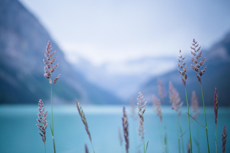 ©KateePederson-Banff-Revy-15.jpg