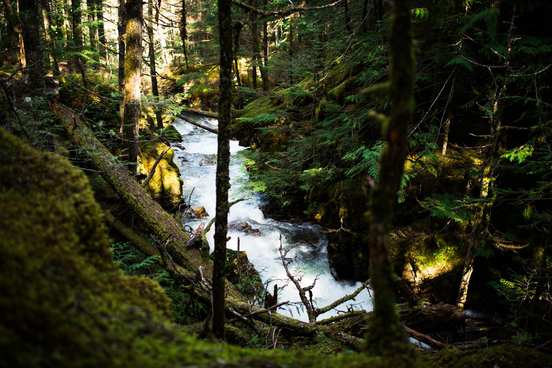 ©KateePederson-Banff-Revy-71.jpg