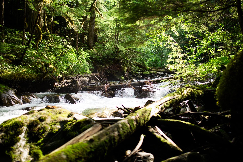 ©KateePederson-Banff-Revy-75.jpg