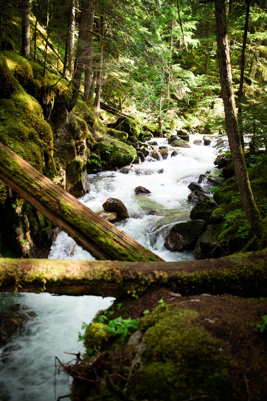 ©KateePederson-Banff-Revy-77.jpg