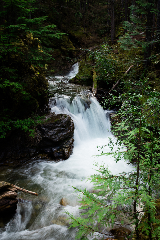 ©KateePederson-Banff-Revy-79.jpg