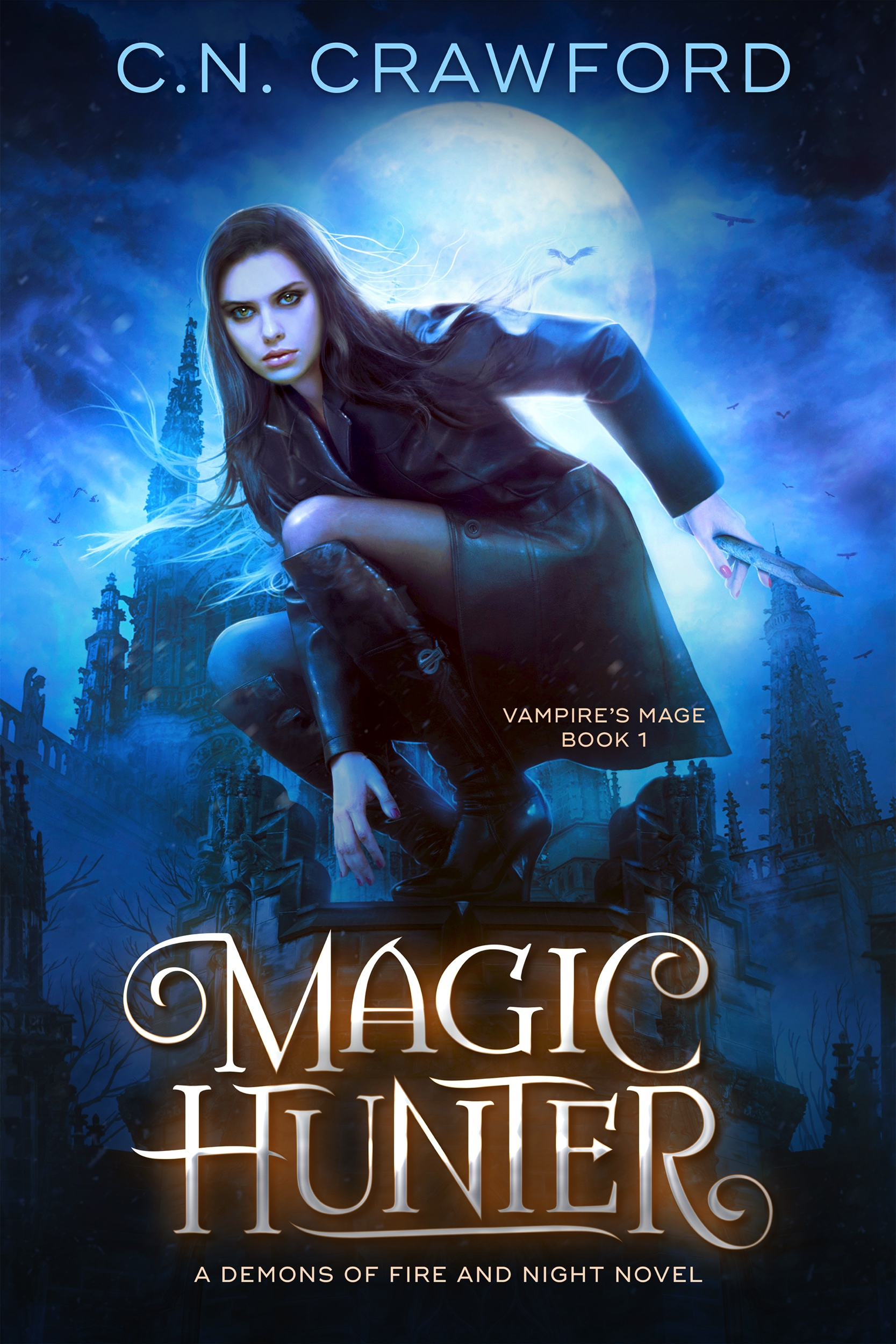 Book 1: Magic Hunter