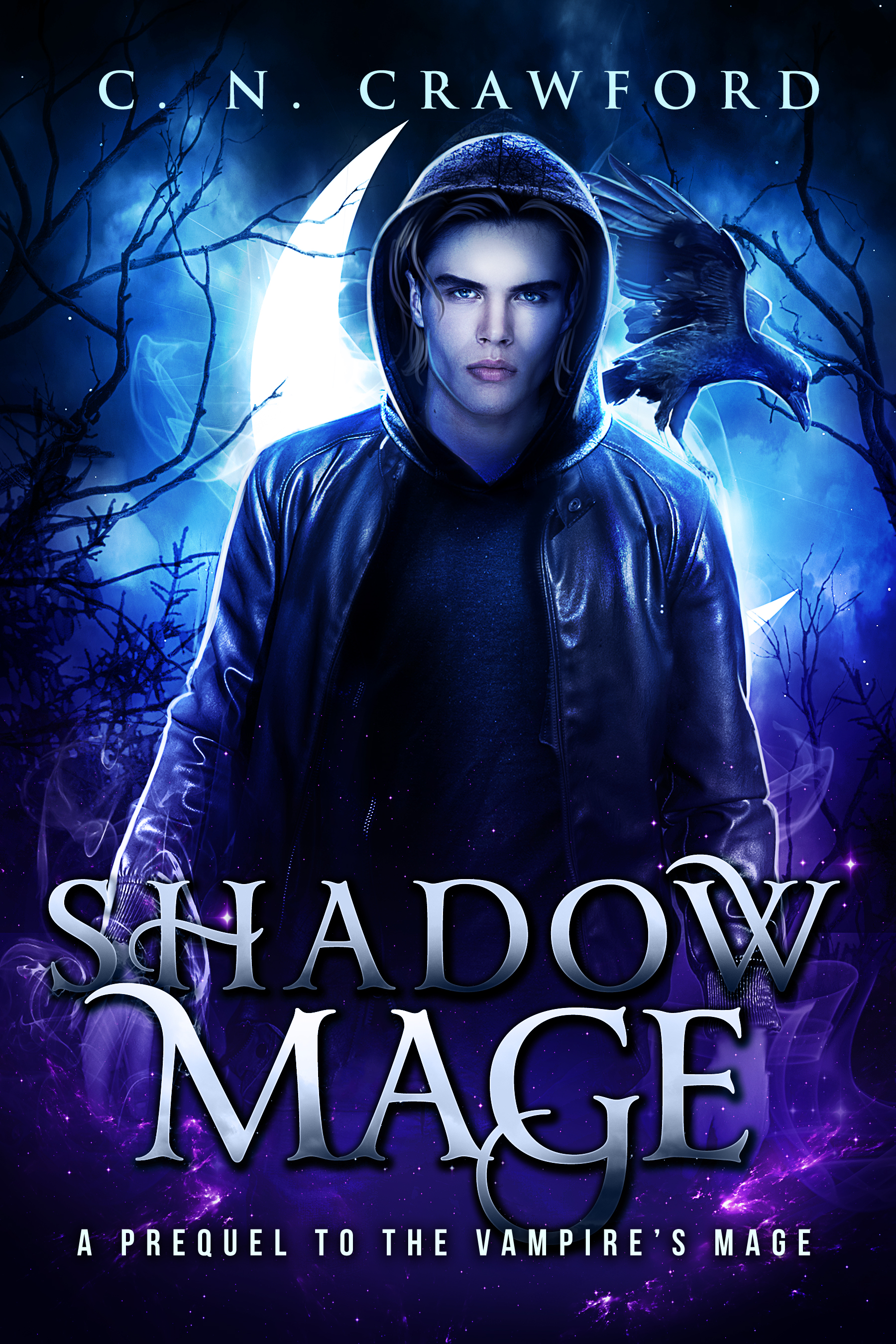 Book 1.1: Shadow Mage