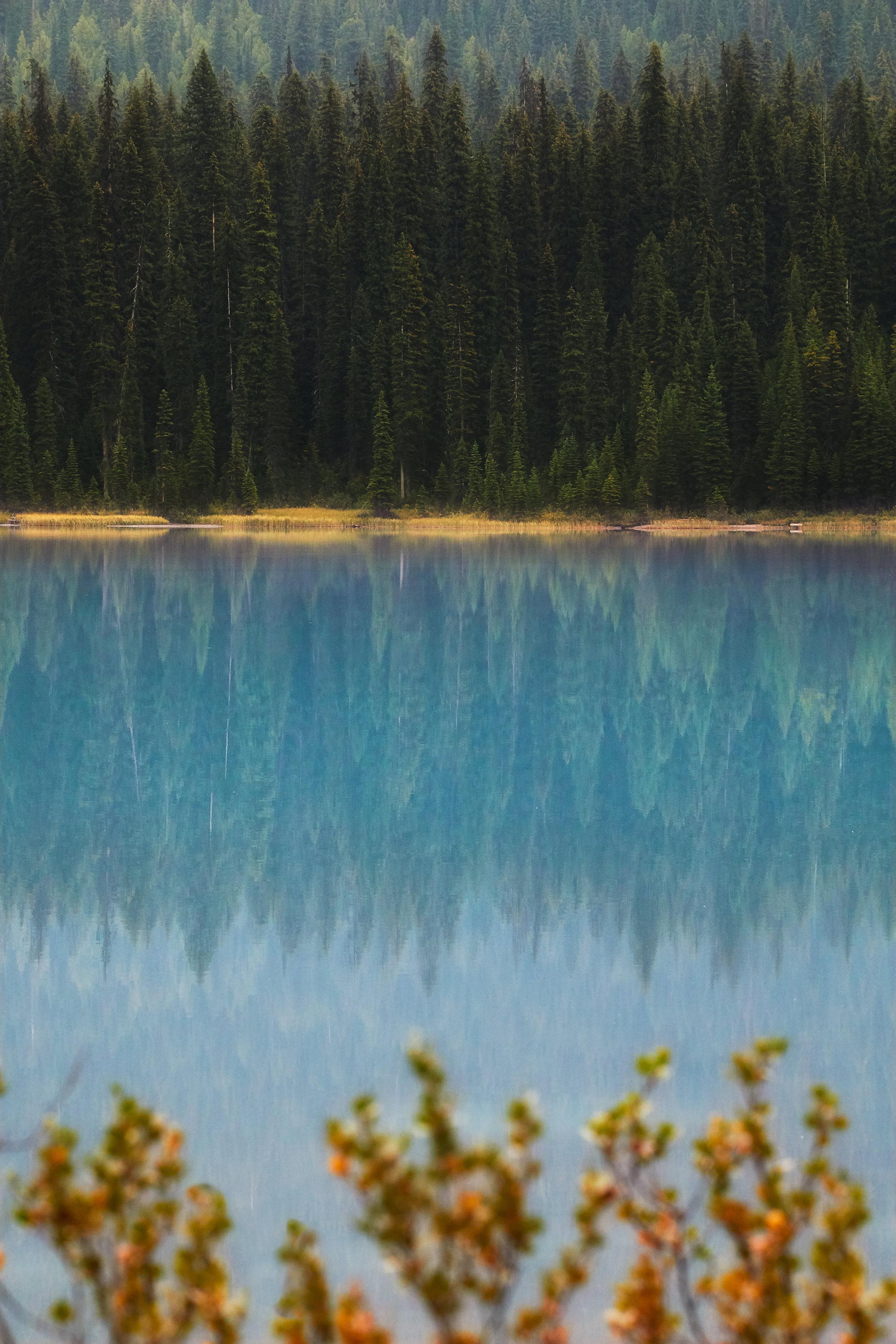 EmeraldReflection.jpg