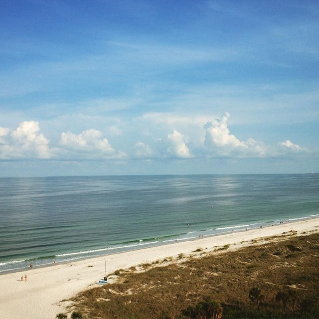Gulf of Mexico. It's mostly blue.